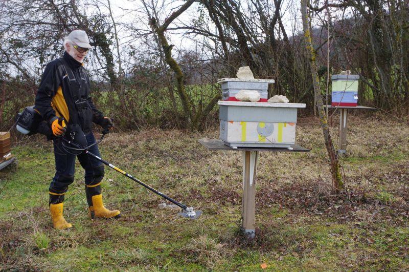 Conseils pratiques pour l'apiculture
