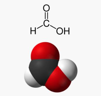 acide formique ou acide méthanoïque pour traitement ruche